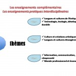 Notre mise en oeuvre de l'interdisciplinarité